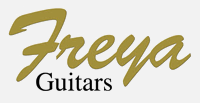 Electric and Acoustic Guitars - online guitar shop & retail unit