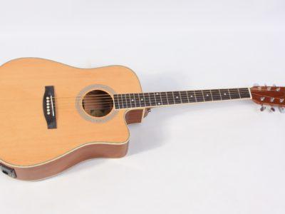 Semi Acoustic Guitars - best value guitars in Ireland